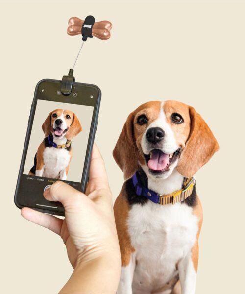 DIG01-Dog-Treat-Selfie-Clip_Action_1280x1280
